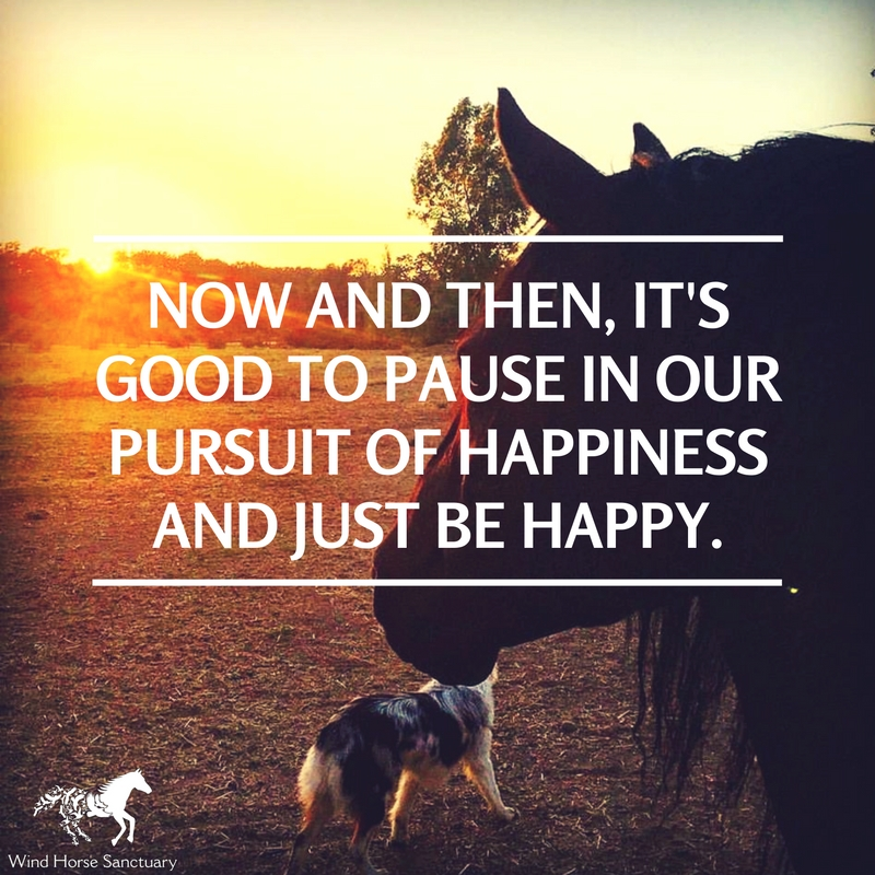 Inspiration - Pausing for Happiness - Wind Horse Sanctuary.jpg