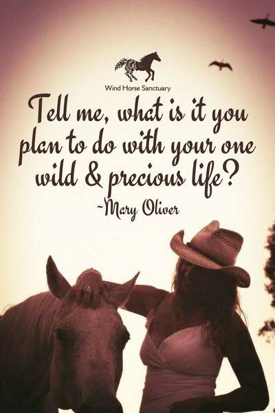 Inspiration - Precious Life Quote - Wind Horse Sanctuary.jpg