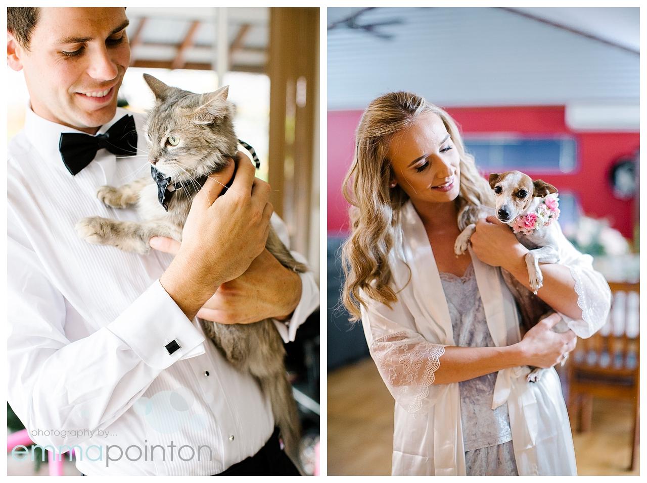 Wedding portraits with pets