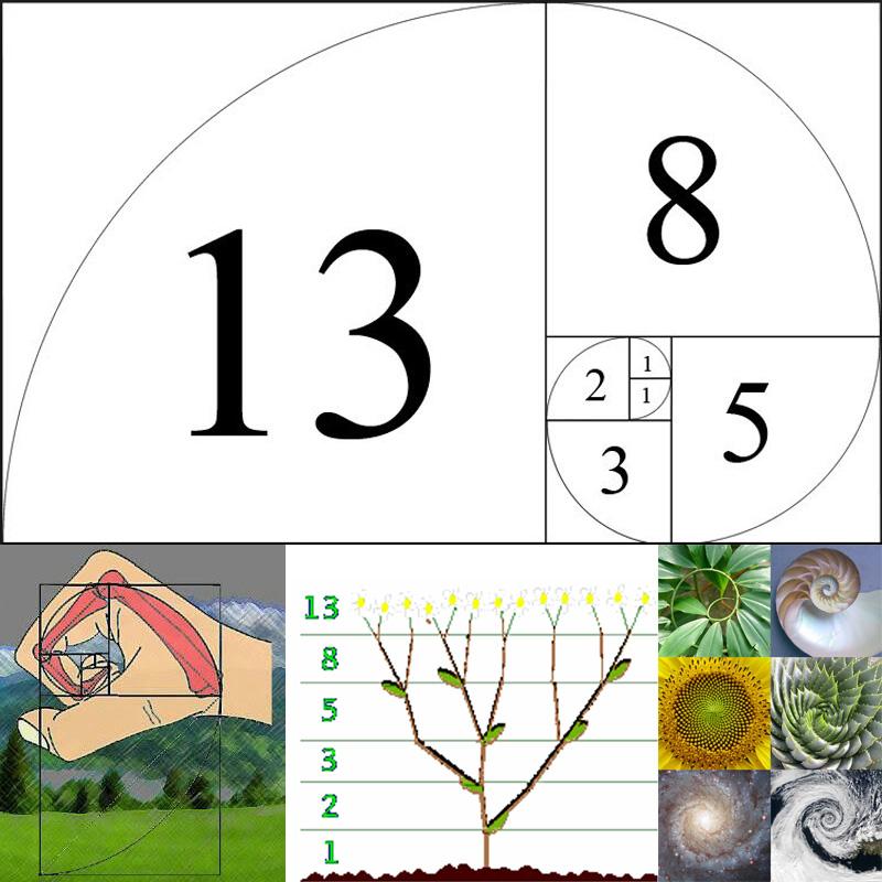 Fibonacci.jpg