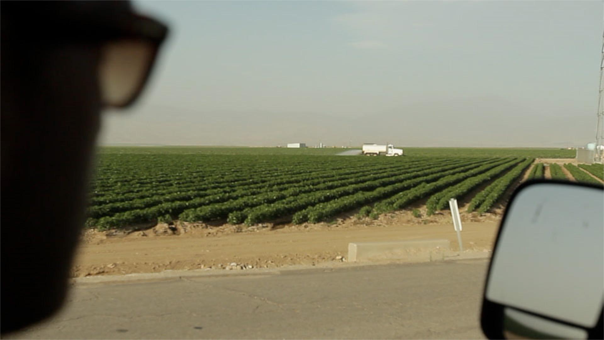 mega-farm-pov.jpg