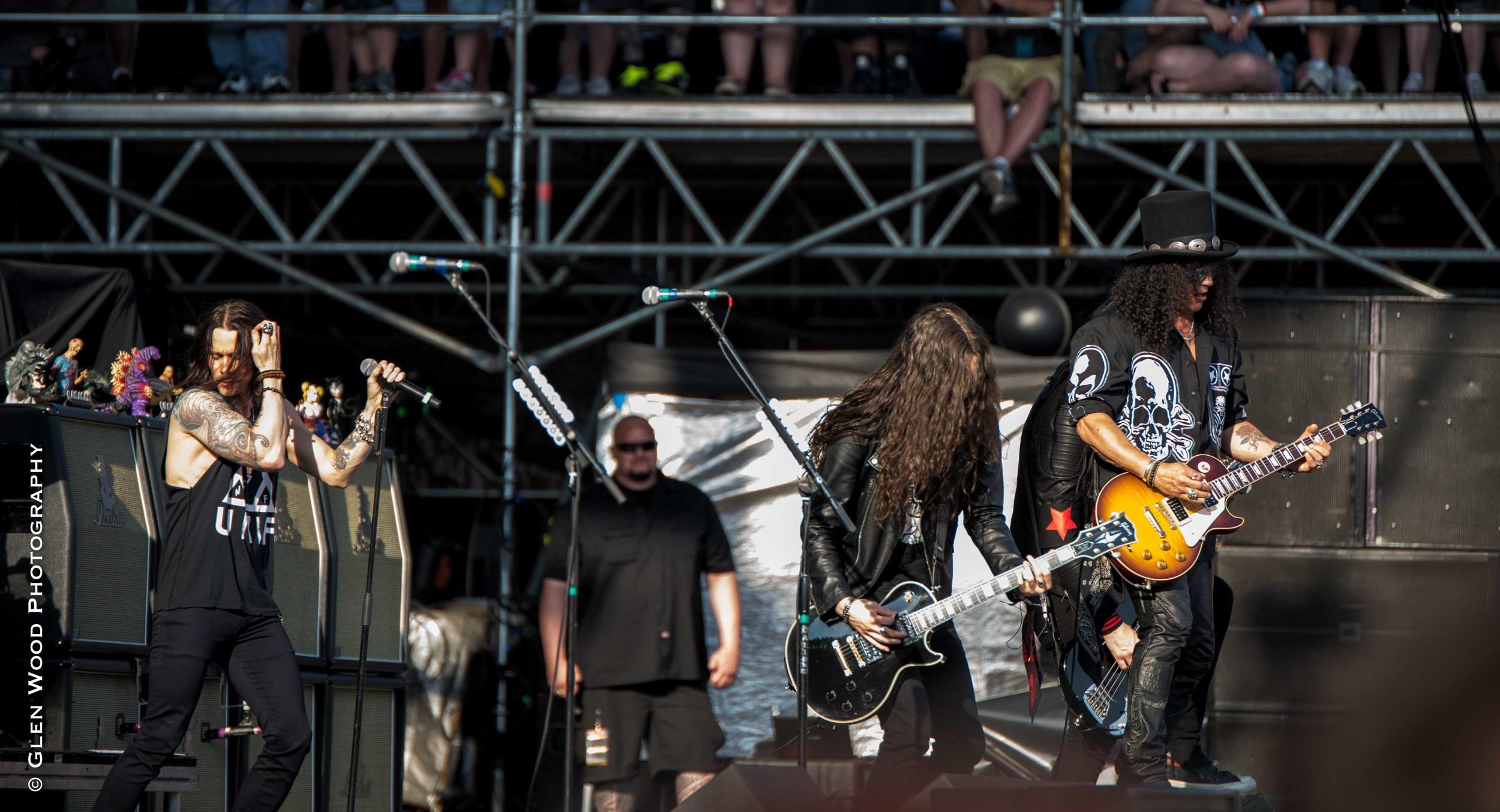 Slash--6.jpg