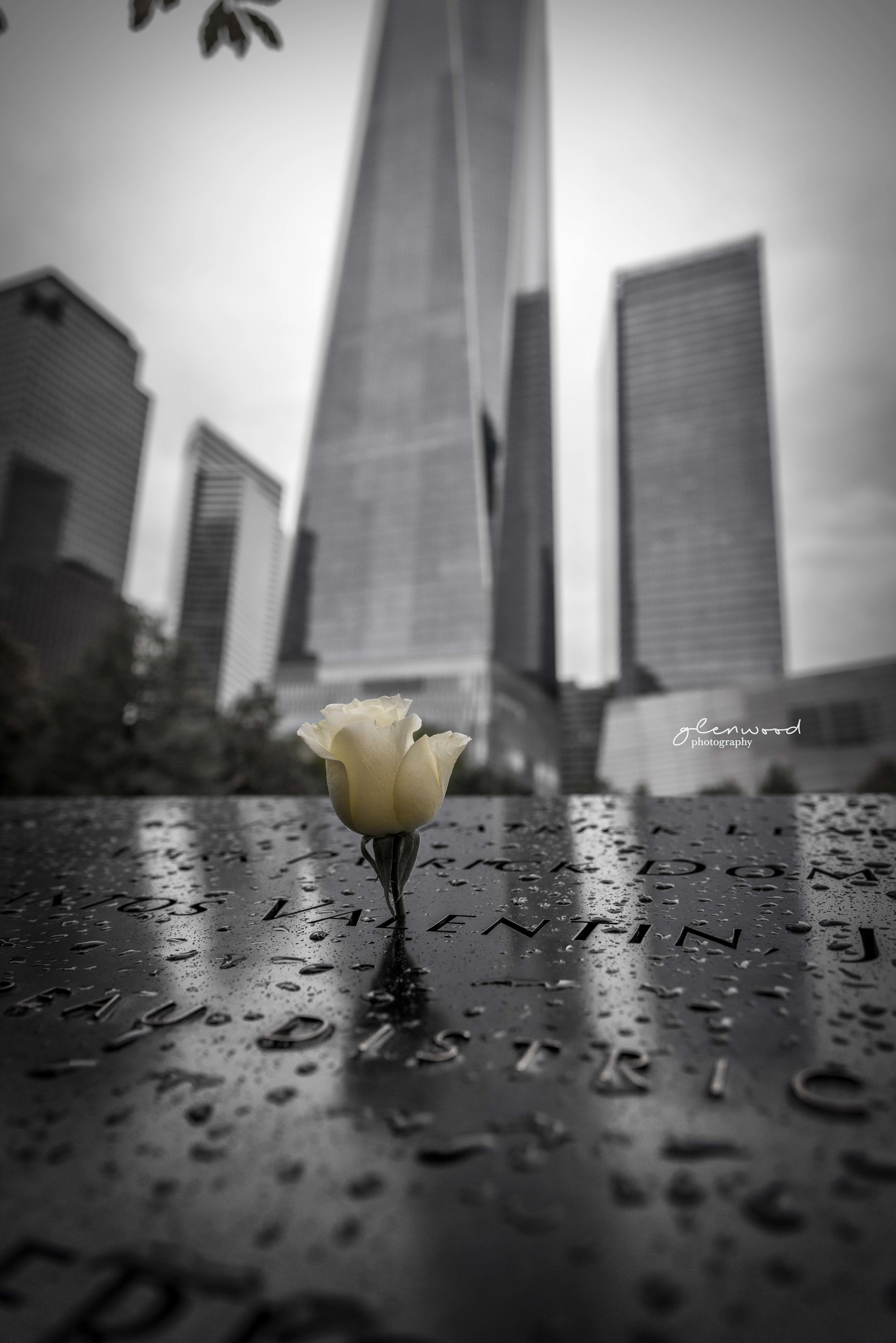 New York--11.jpg