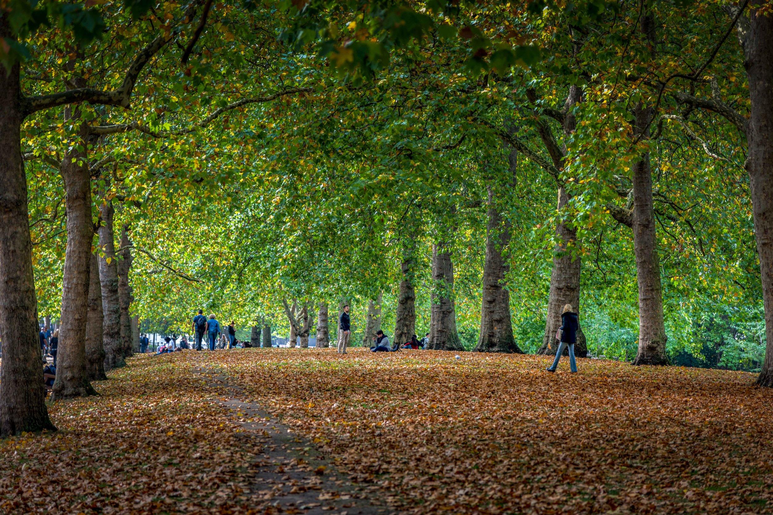 London--2.jpg