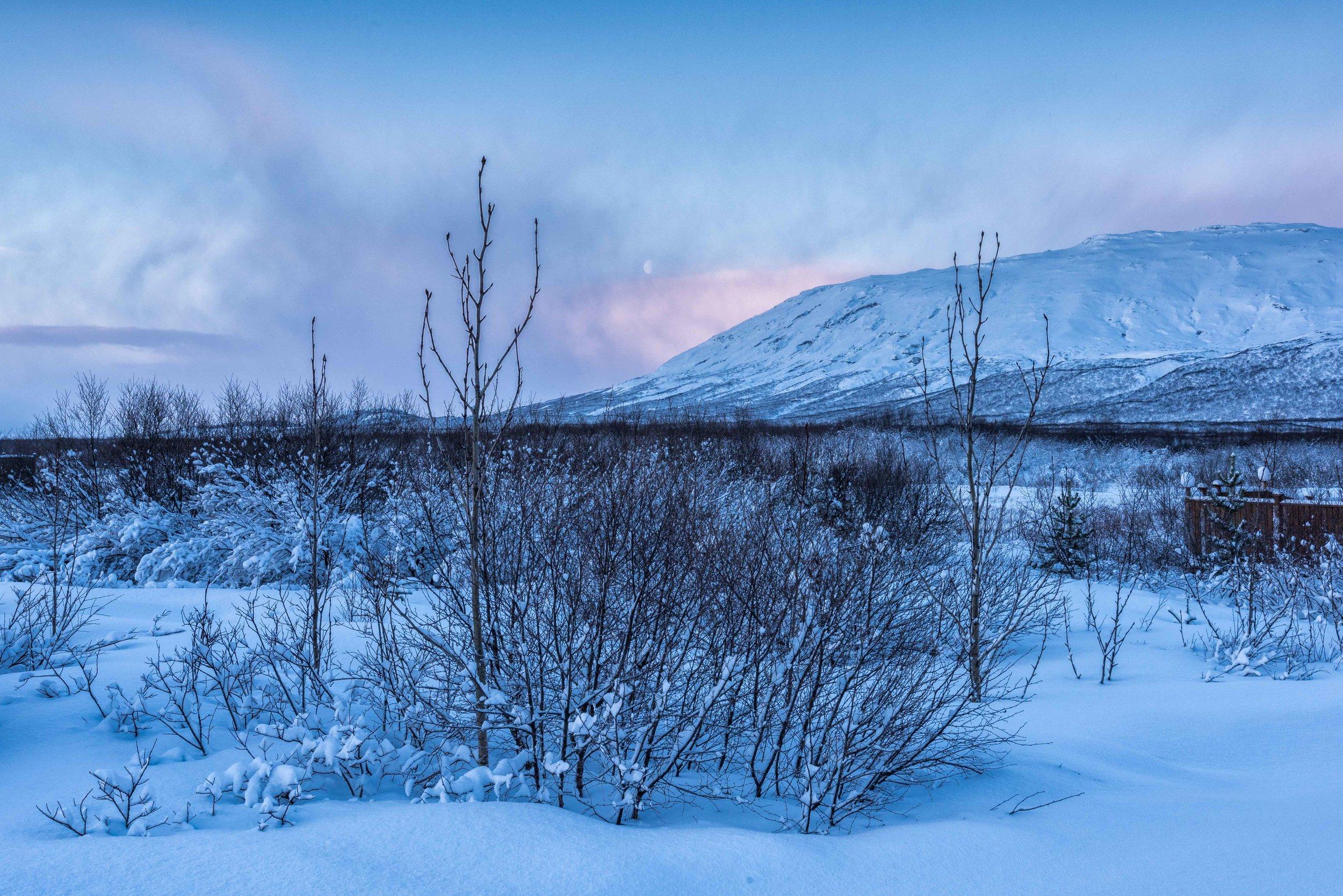 Iceland 2018 - Tuesday day 3-.jpg