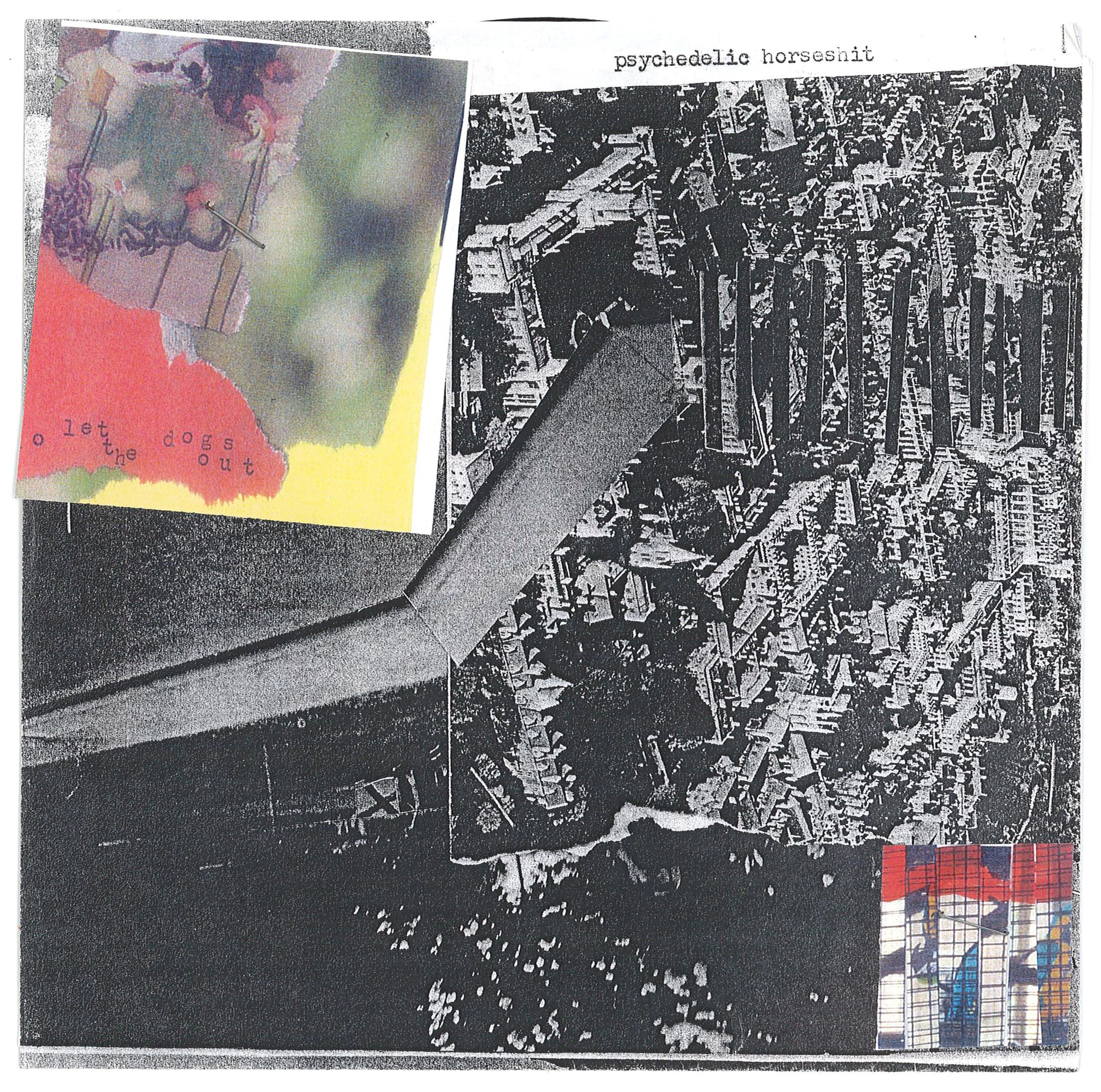 WLWLTDOO-2006-7-PSYCH_HORSE-WLTDO-FRONT.jpg