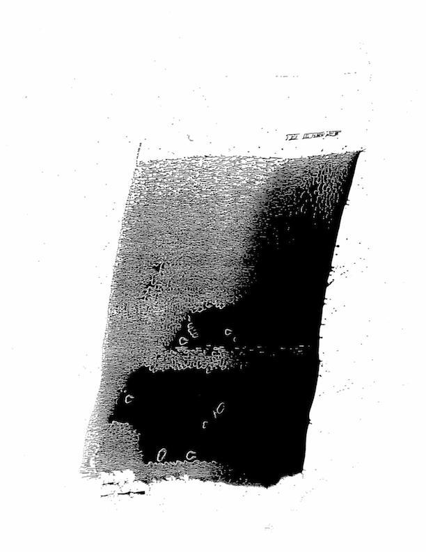 img612.jpg