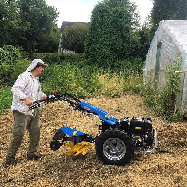 our new BCS tractor, which helps build raised beds