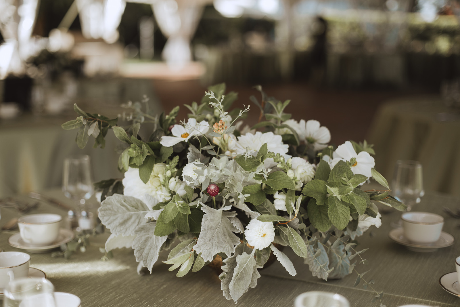marylandflower4.jpg