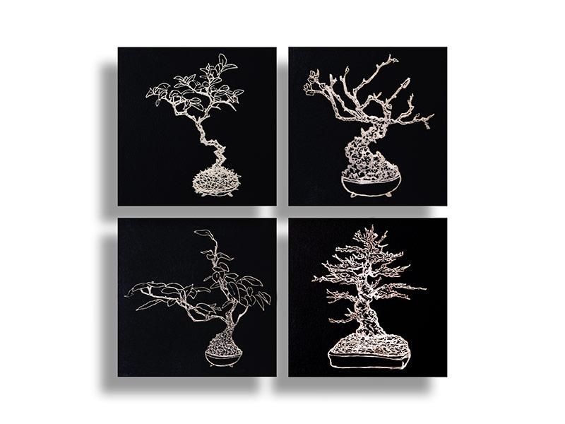 black-board-series_baby-bonsai_1-4.jpg