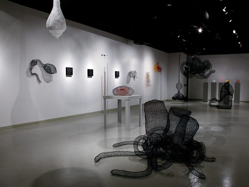 Gallery Installation I