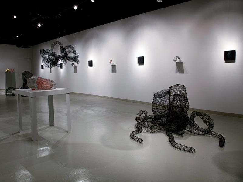 Gallery Installation II
