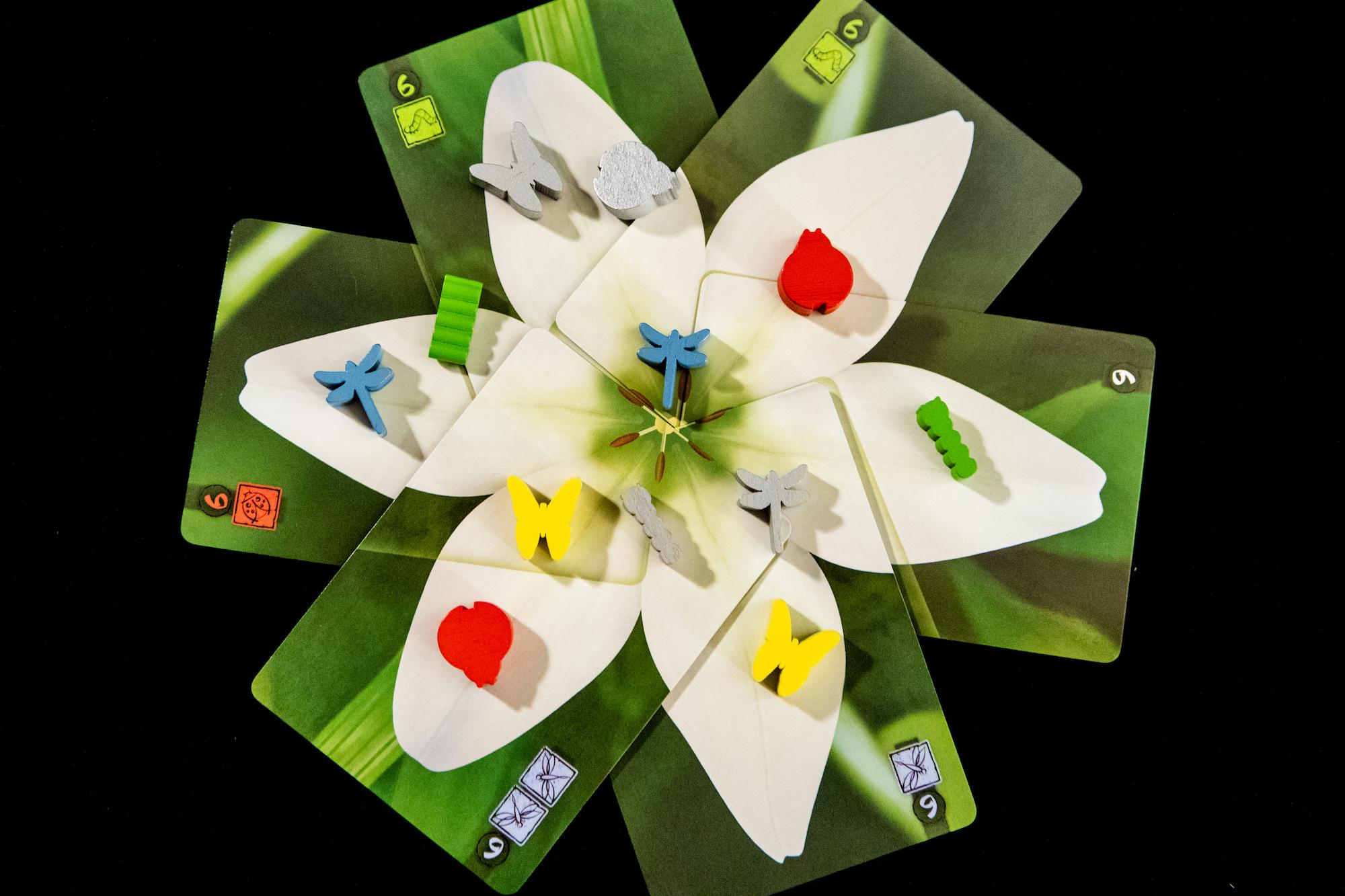 Lotus (4 of 6).jpg
