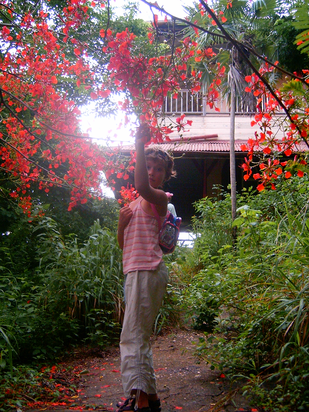 BLOODY FLOWERS @ HAUNTED CHACACHACARE
