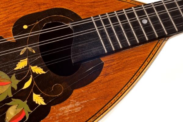 Bowlback Mandolin - soundboard and fretguard