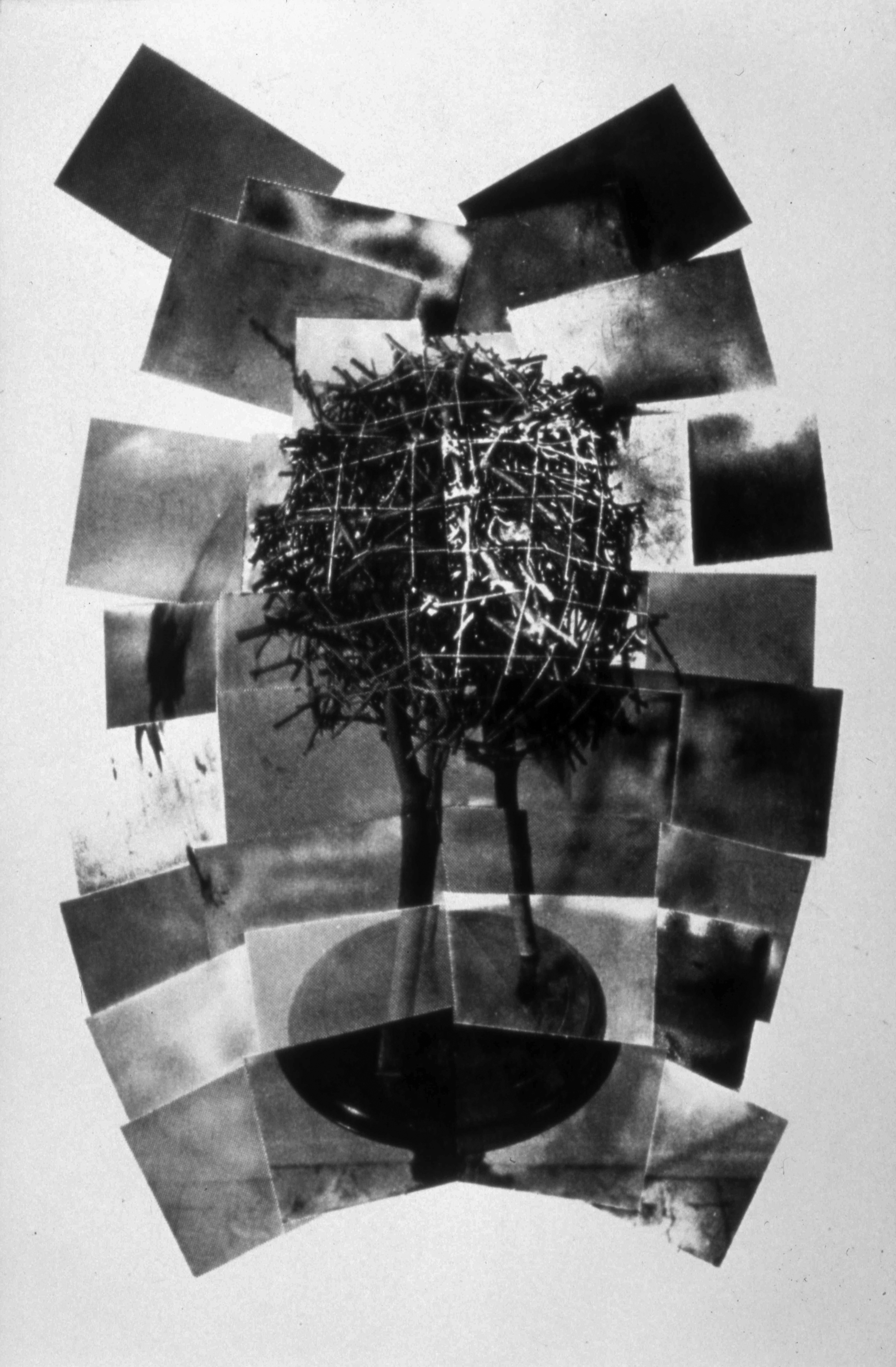 untitled, 1991, photo etching, 16 x 24""