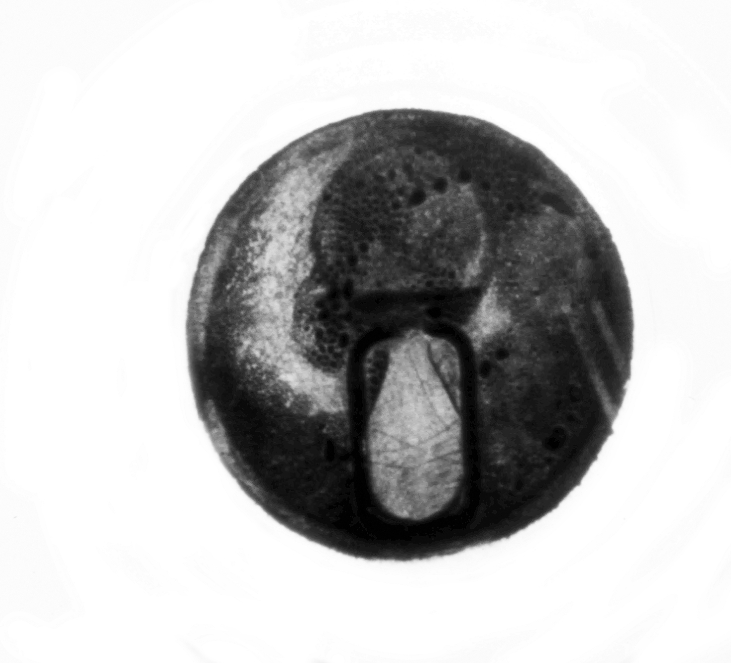Soda Can Top, 1972, intaglio from soder cast, 2""