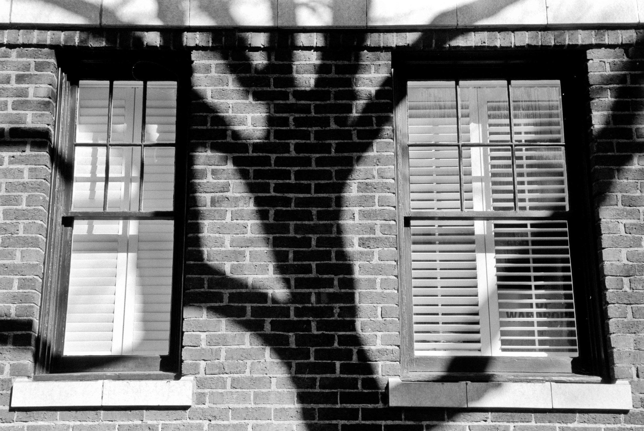 Shadowscapes-2.jpg
