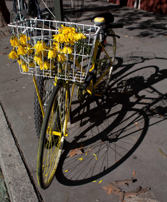 Bikescapes-24.jpg