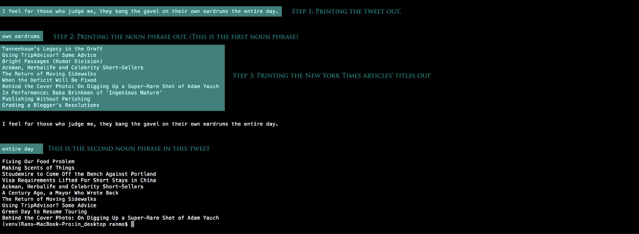 Testing in Terminal. The Python script prints different information out separately.