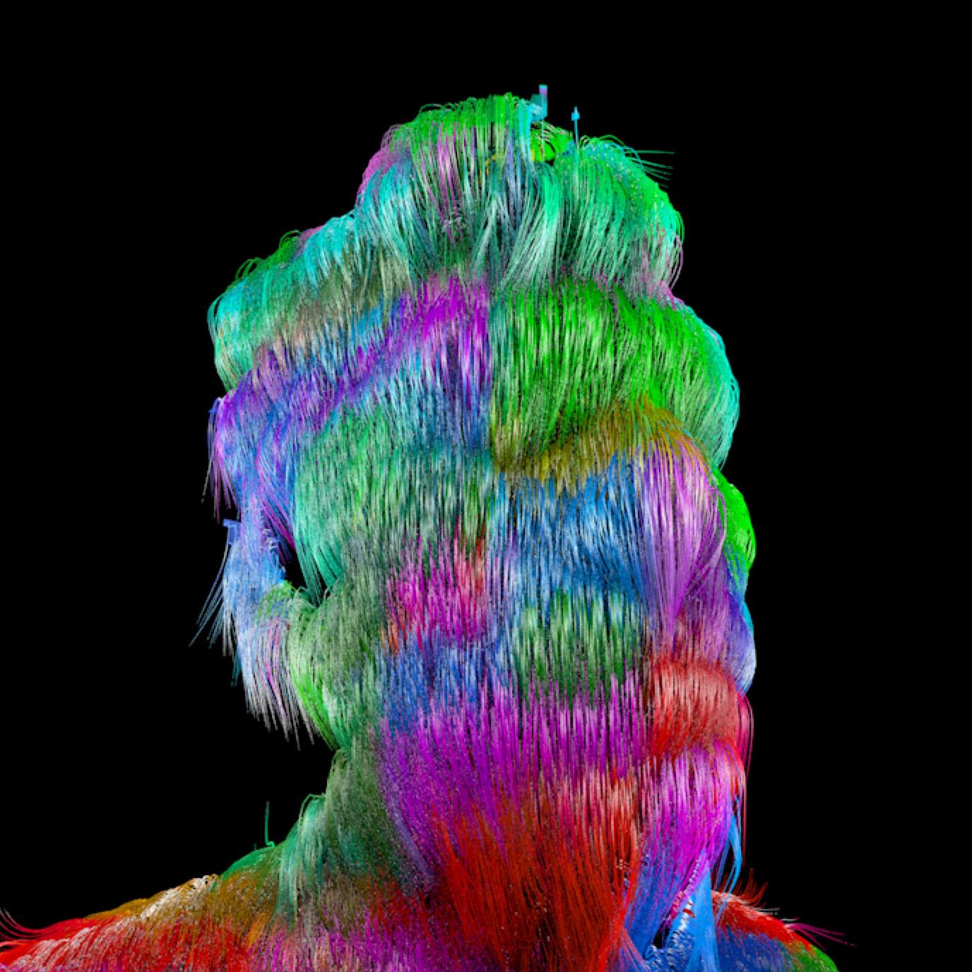 me_colorful_hair.jpg