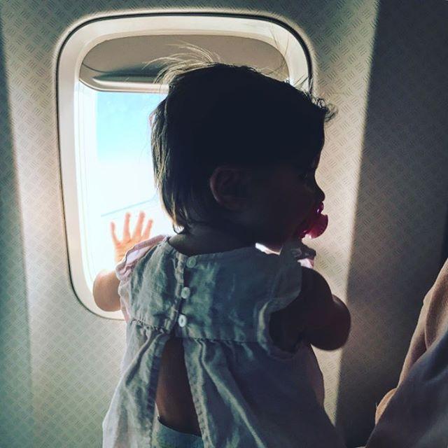 Lou's first flight ✈️🤙🏼