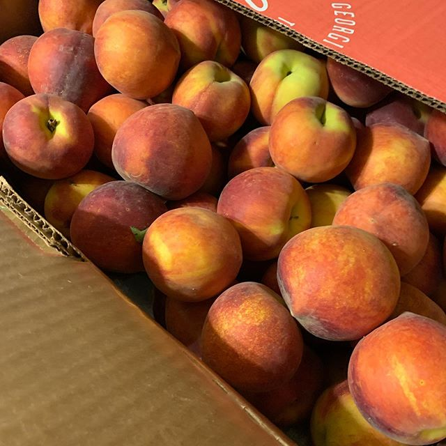 25 lbs of #peaches #composer #composerfood #newmusic