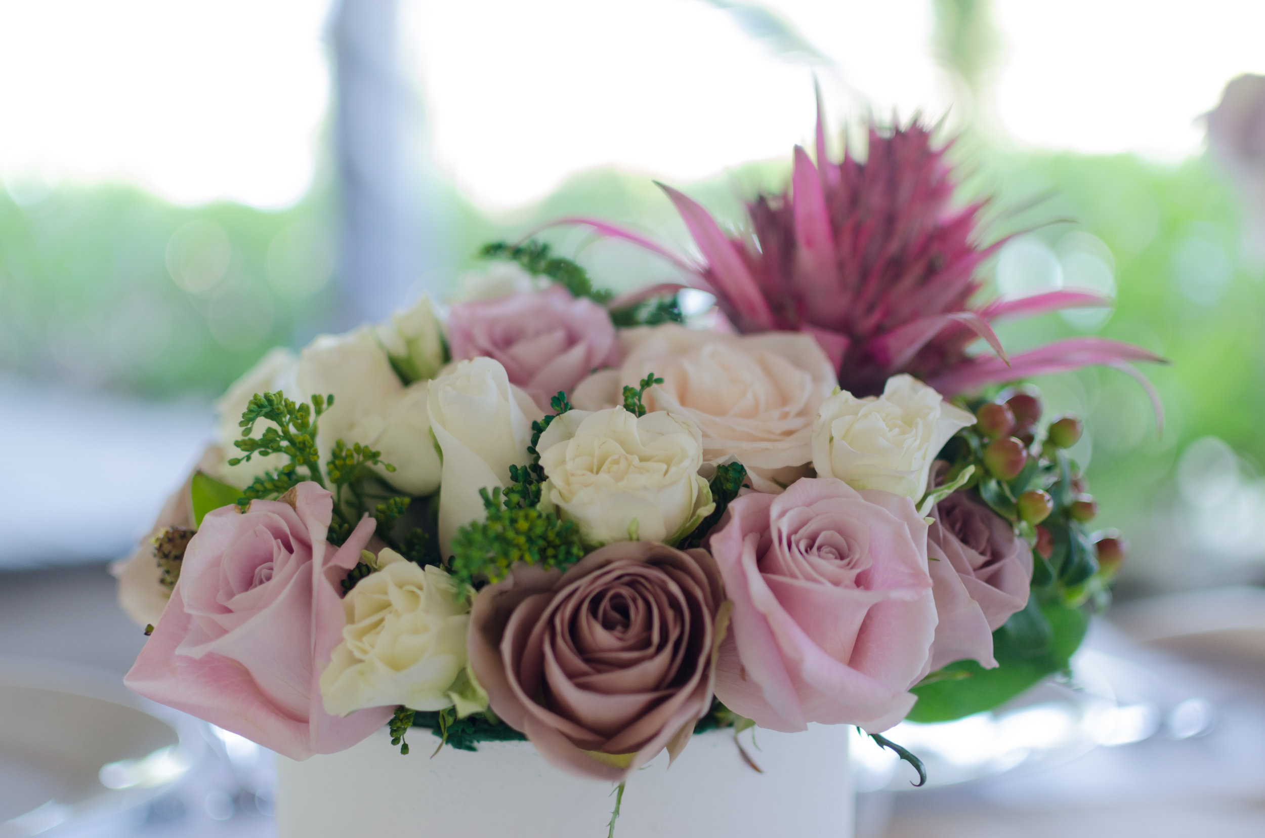 venue roses