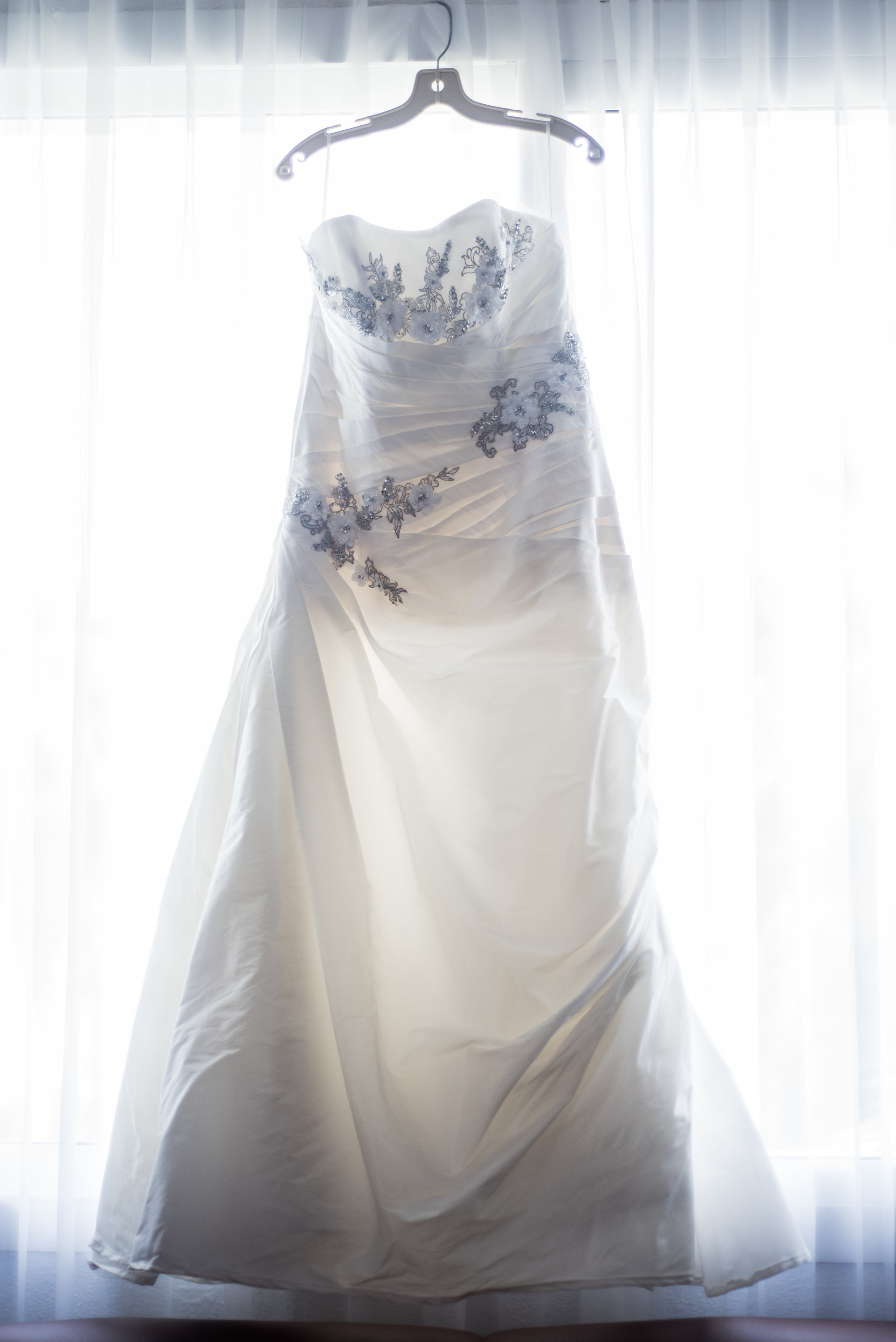 The Dress -