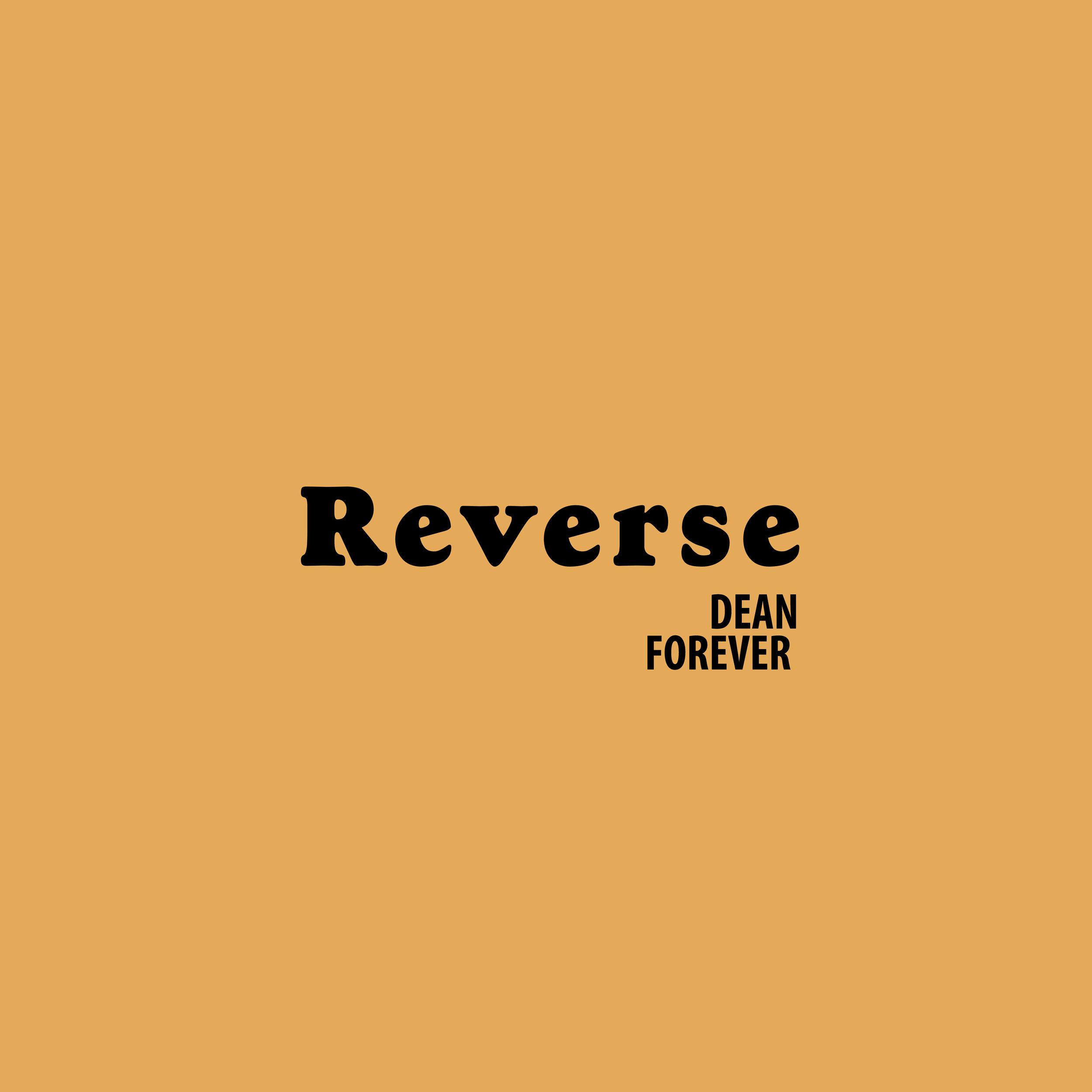 df-reveverse-branding.jpg