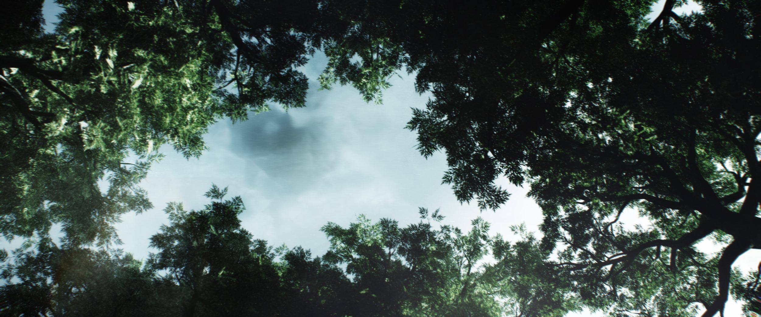 TreeUP_Clouds.jpg