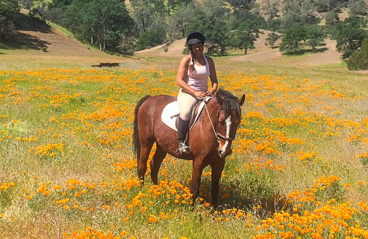 """Carina Austin   Carina is one of our top riders at MCR, riding the training horses, enthusiastically exploring the trails, and putting on the miles that make our horses so good at what they do.  Carina is a UC Davis graduate in Animal Science with a double focus on equine and companion animals and lives in nearby Stonyford. She calls her life there a """"a little slice of heaven"""".  Carina started riding at age 7, has ridden competitively for the UC Davis Hunter Jumper Team, and is currently competing in 3 Day Eventing.  What Carina likes best about MCR: """"I love, love, love riding! So far I've loved each and every horse, figuring our their quirks and preferences, they're so full of personality. I'm really excited to work under Nancy and learn from her – and I'm also really excited to continue to watch the babies and the training kids grow. Such a wonderful, wonderful, once-in-a-lifetime experience."""""""