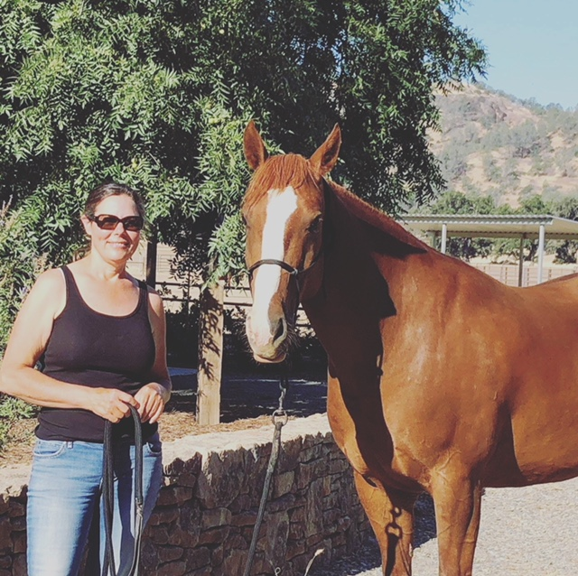 <p><strong>Strider (formerly Triumph)</strong>Owner: Lisa Lydon<i>More →</i></p>