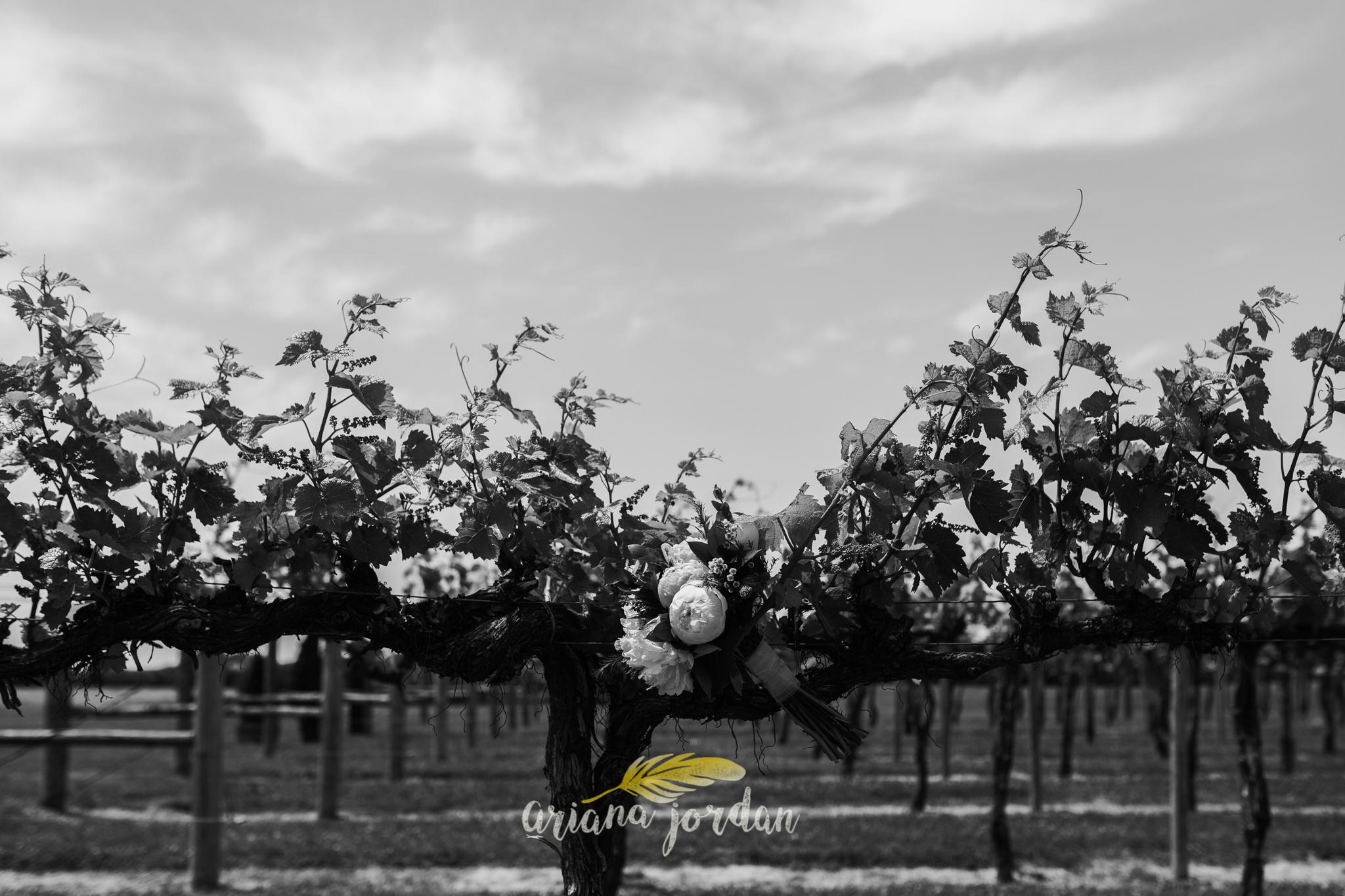 Kentucky Wedding Photographer - Talon Winery -0007.jpg
