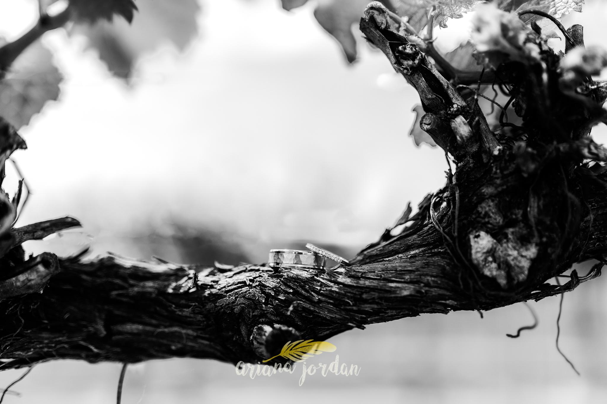 Kentucky Wedding Photographer - Talon Winery -0009.jpg