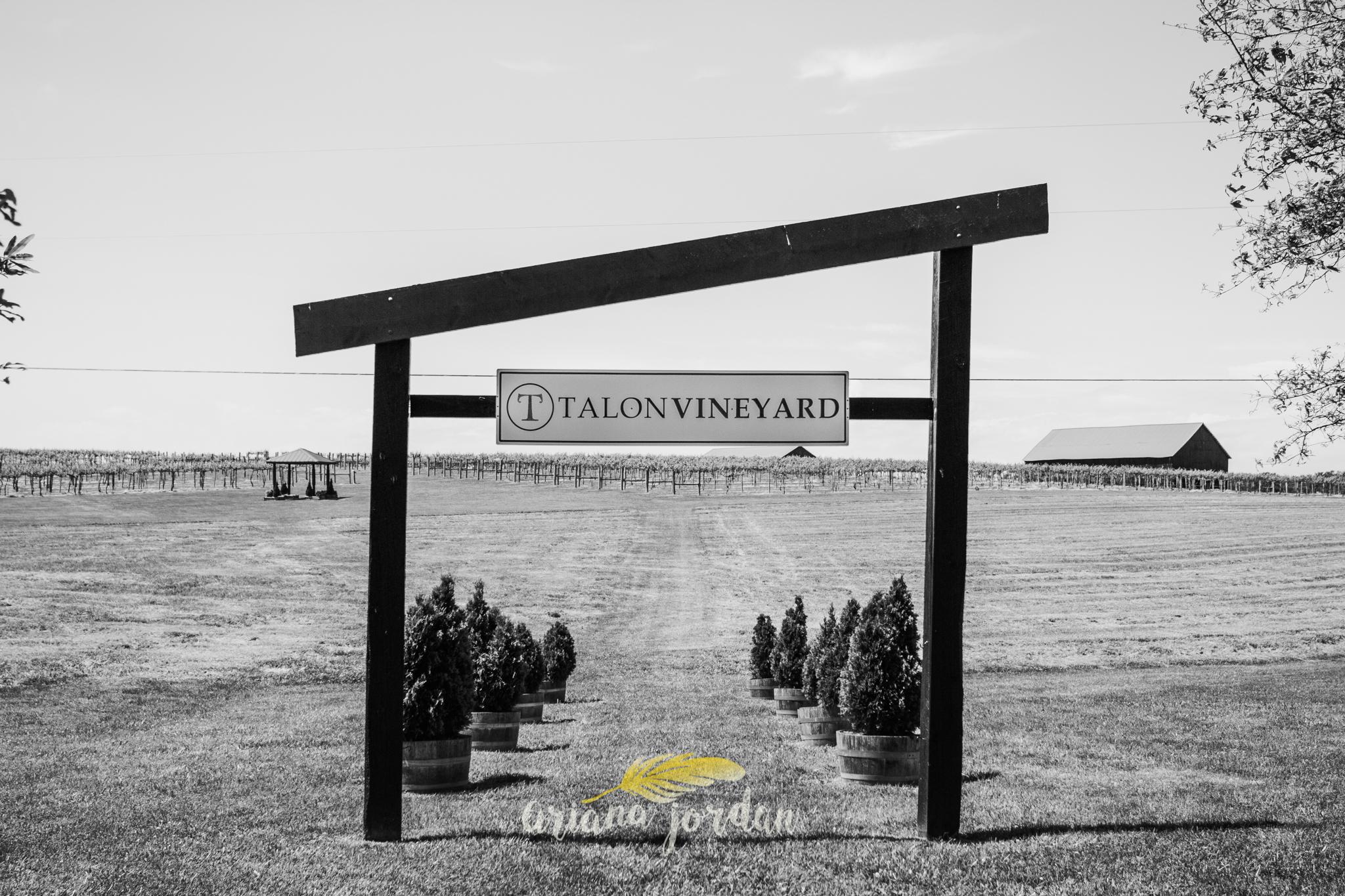 Kentucky Wedding Photographer - Talon Winery -0012.jpg