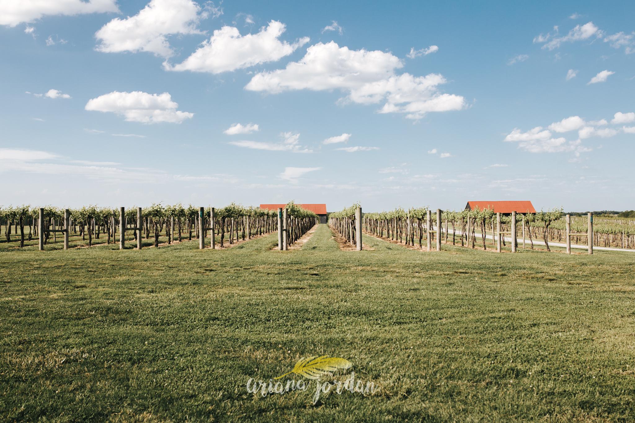 Kentucky Wedding Photographer - Talon Winery -0102.jpg