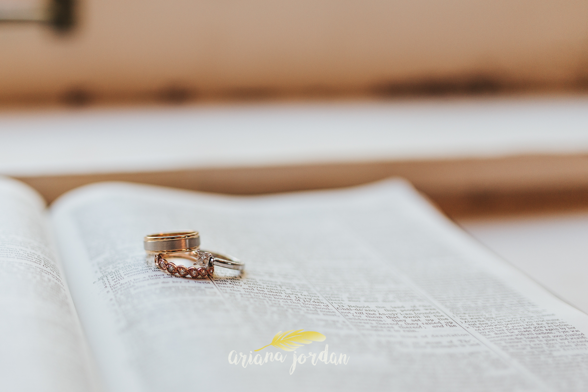 010 Ariana Jordan Photography - Ashley Inn Wedding Photographer 9275.jpg
