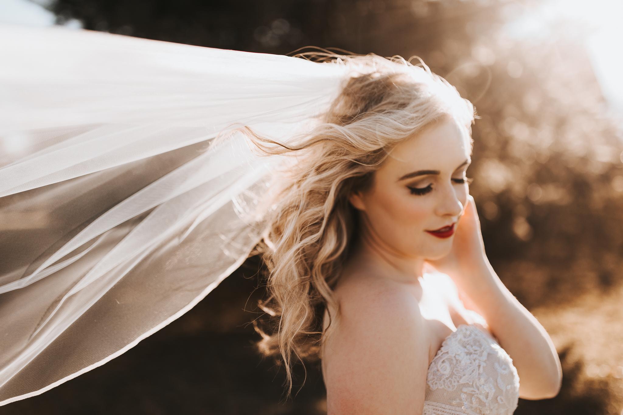0053 Ariana Jordan Photo - Cameron & Lauren's Wedding at Talon Winery  6193.jpg