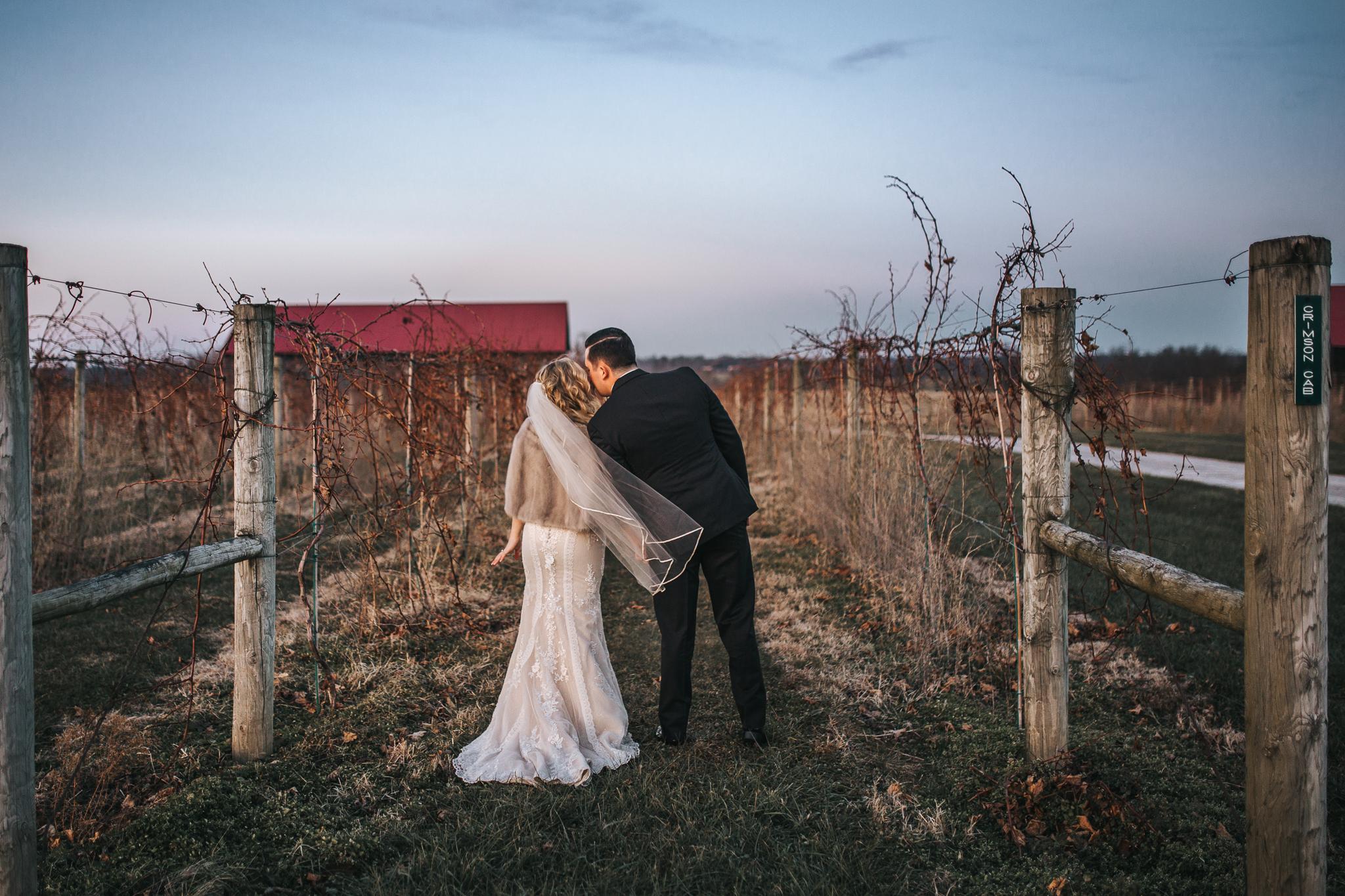 0114 Ariana Jordan Photo - Cameron & Lauren's Wedding at Talon Winery  6947.jpg