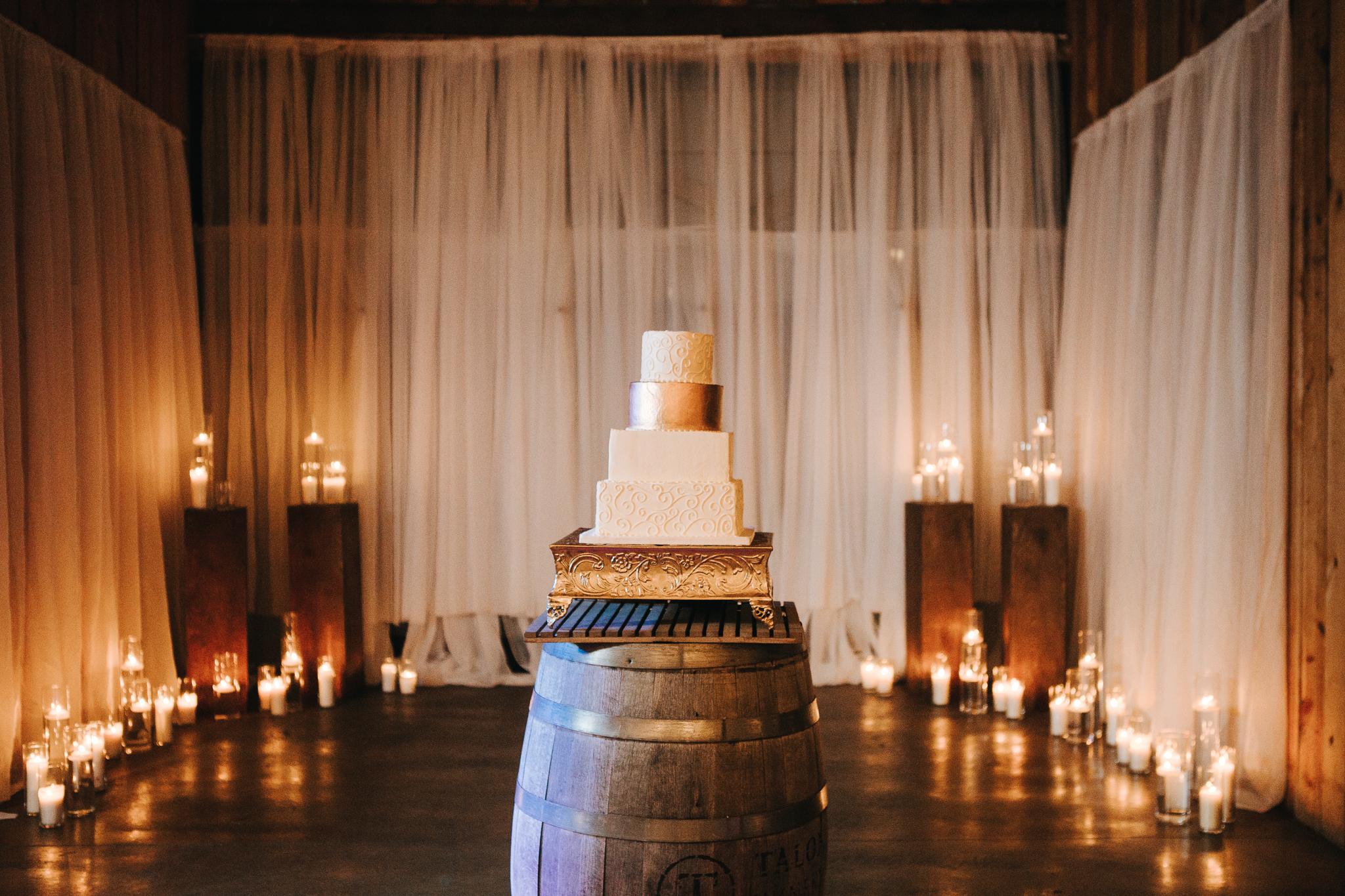 0141 Ariana Jordan Photo - Cameron & Lauren's Wedding at Talon Winery  9282.jpg