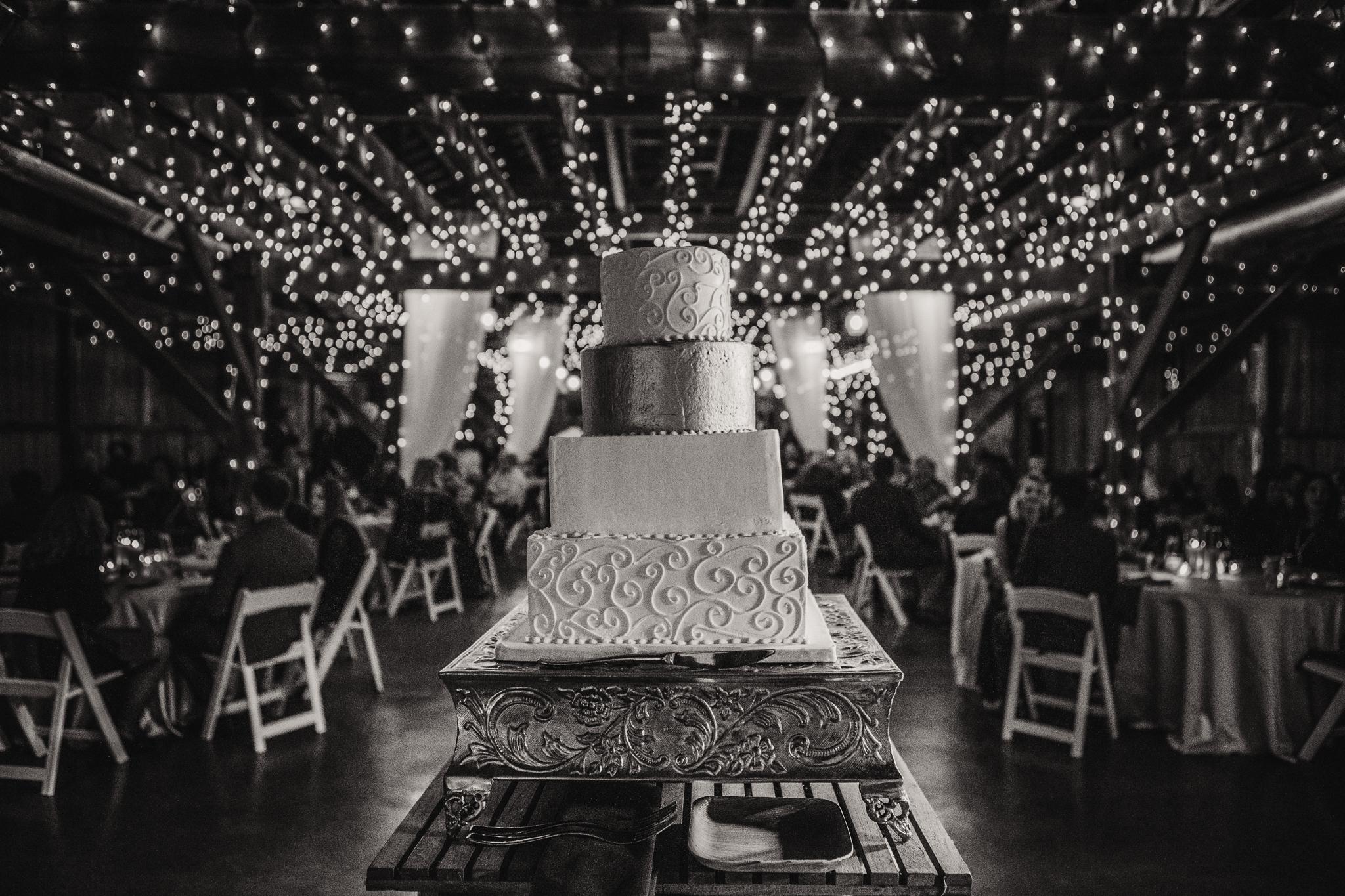 0142 Ariana Jordan Photo - Cameron & Lauren's Wedding at Talon Winery  9286.jpg