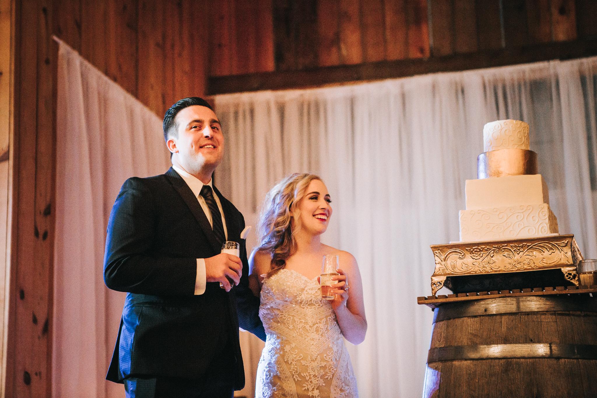 0156 Ariana Jordan Photo - Cameron & Lauren's Wedding at Talon Winery  9498.jpg