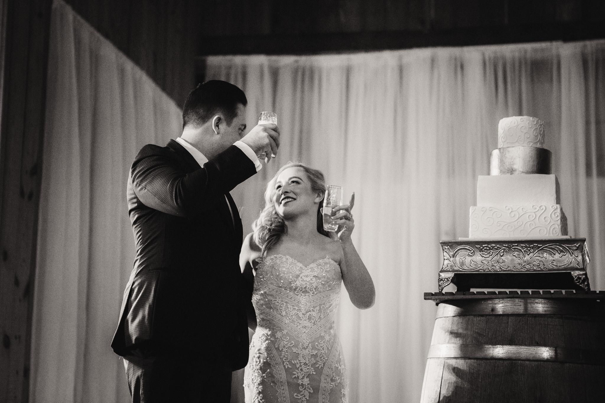 0157 Ariana Jordan Photo - Cameron & Lauren's Wedding at Talon Winery  9500.jpg