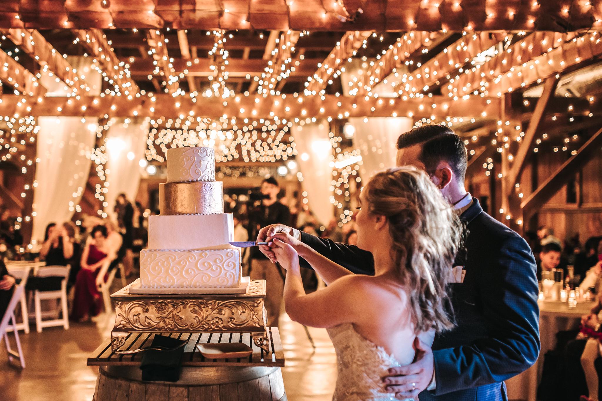 0160 Ariana Jordan Photo - Cameron & Lauren's Wedding at Talon Winery  7576.jpg
