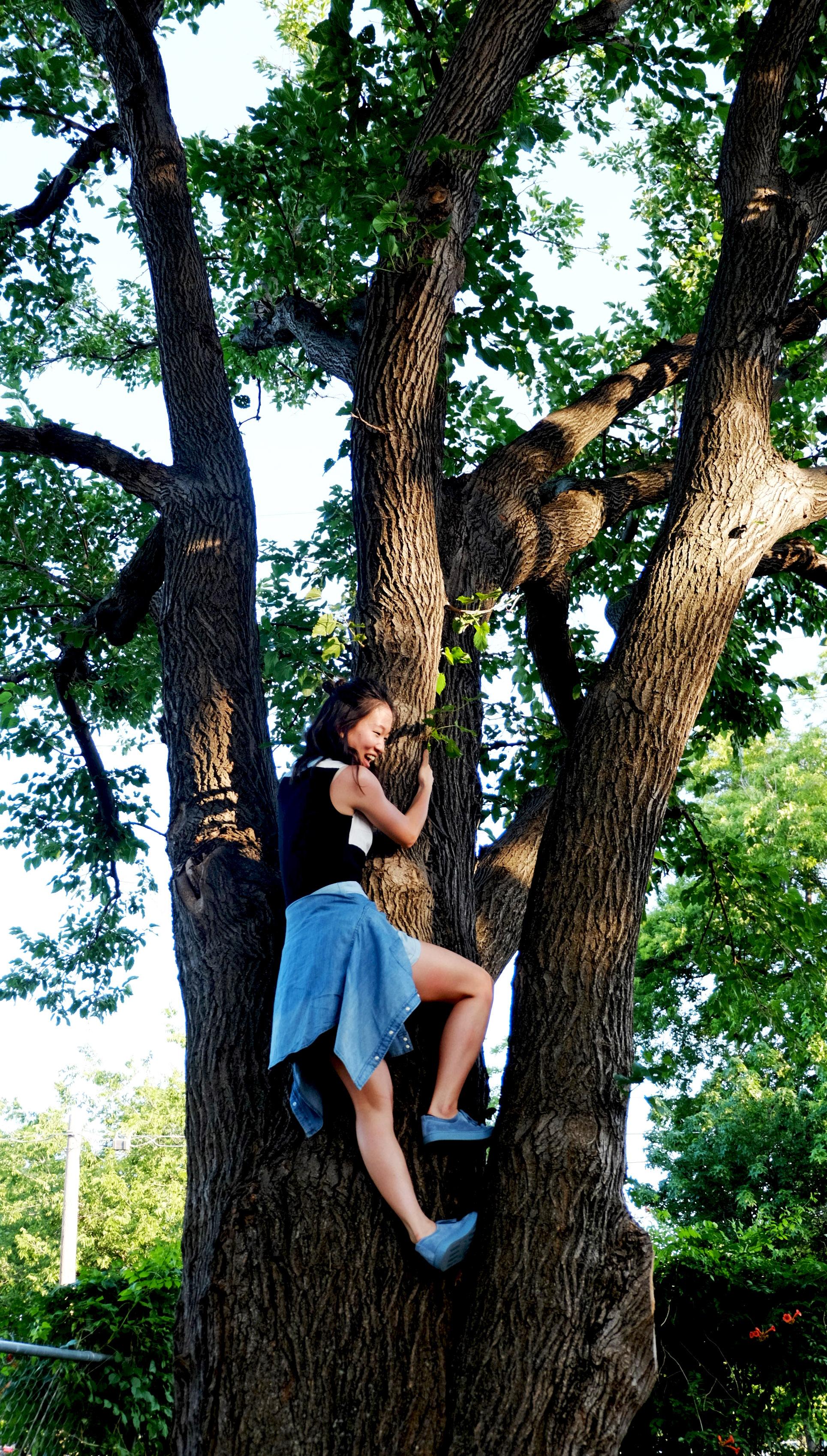In Dallas I ...almost fell off a tree.