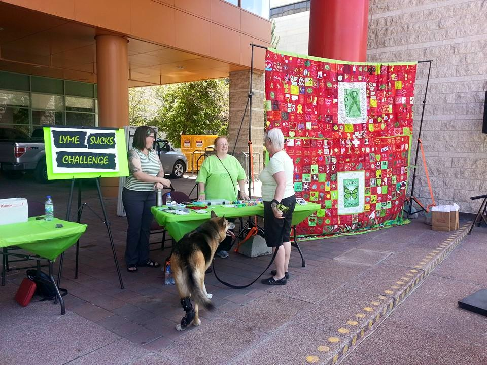 Maggie the lyme dog at ride for lyme.jpg