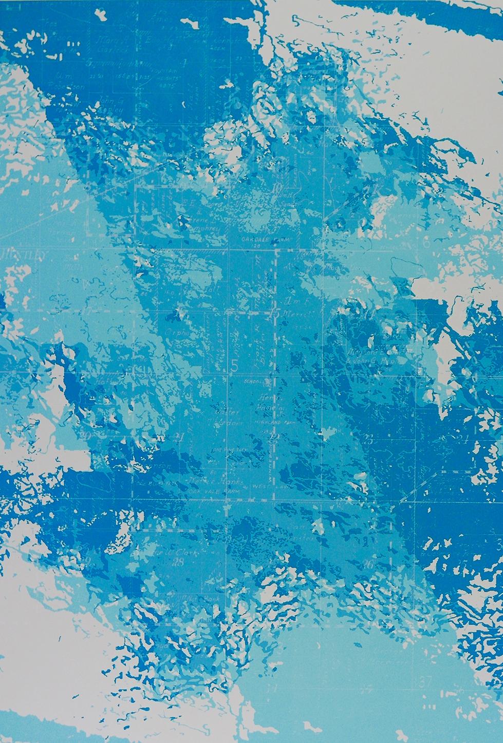 "Inherent   screen print  on Zerkall paper  23"" x 35""  2017  ed. 3"