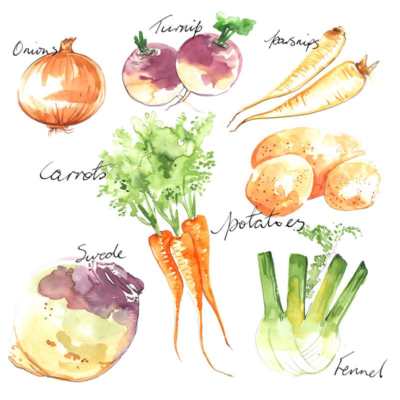 Food Illustration | Watercolour | Vegetables | London based illustrator Willa Gebbie