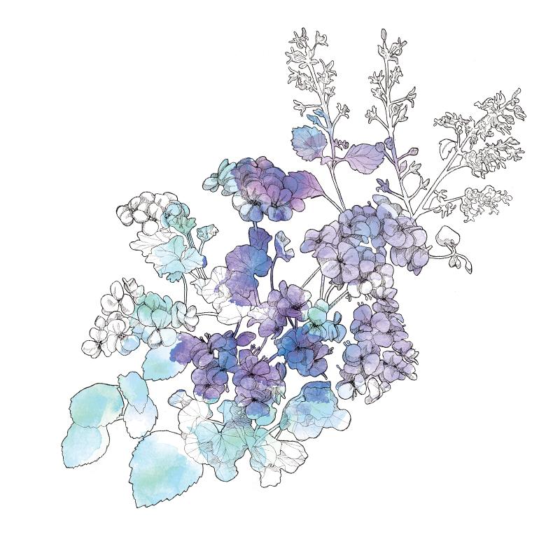 Floral Illustration | Packaging| Beauty | Feminine |London based illustrator Willa Gebbie